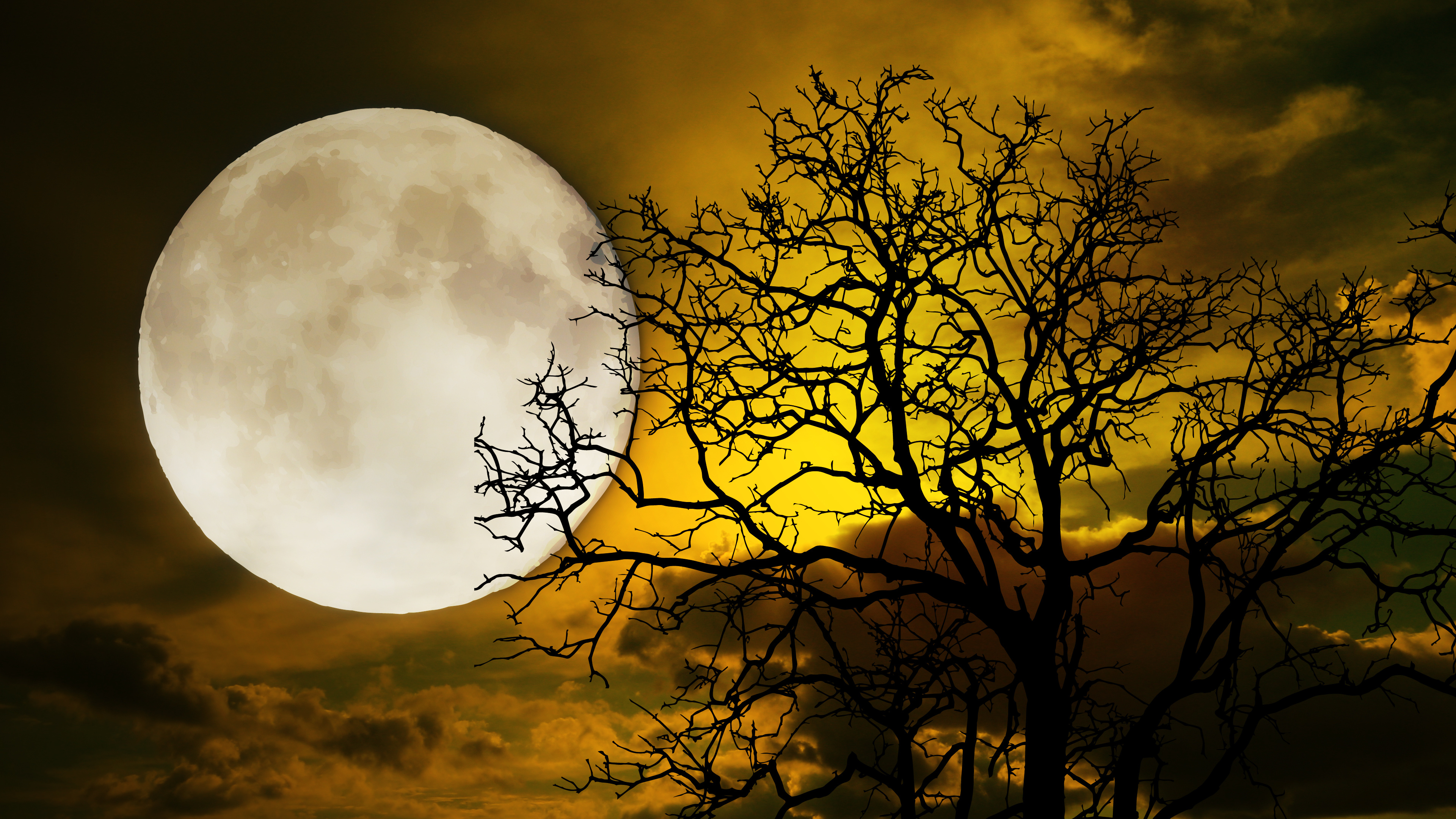 Full Moon with Trees